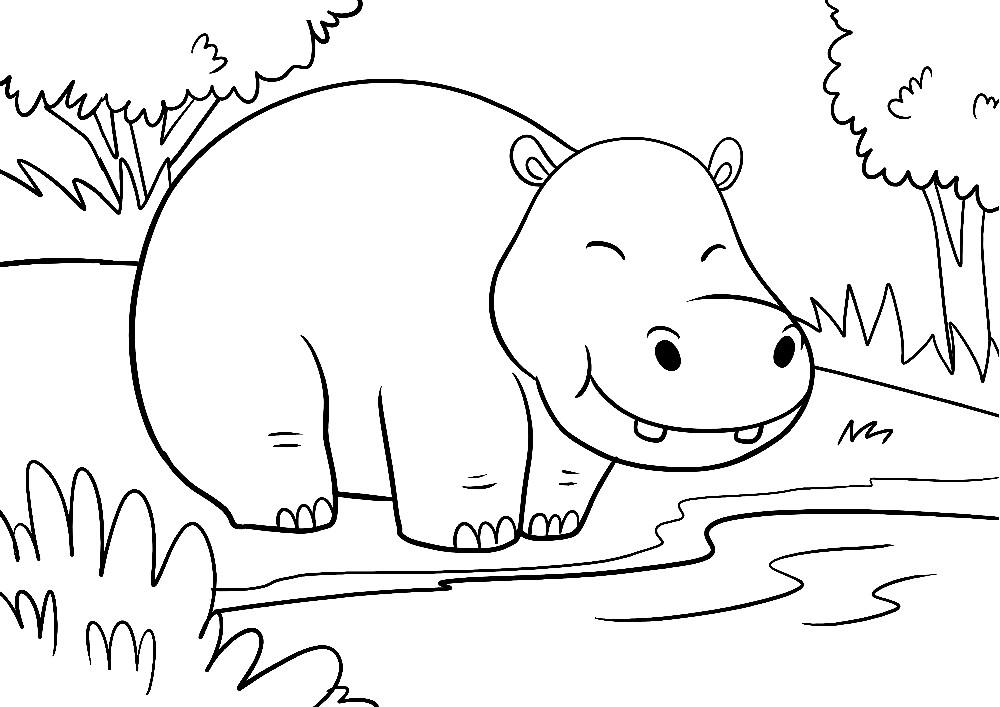 Ausmalbilder Tiere - Ein fröhliches Nilpferd steht am einem Wasserloch
