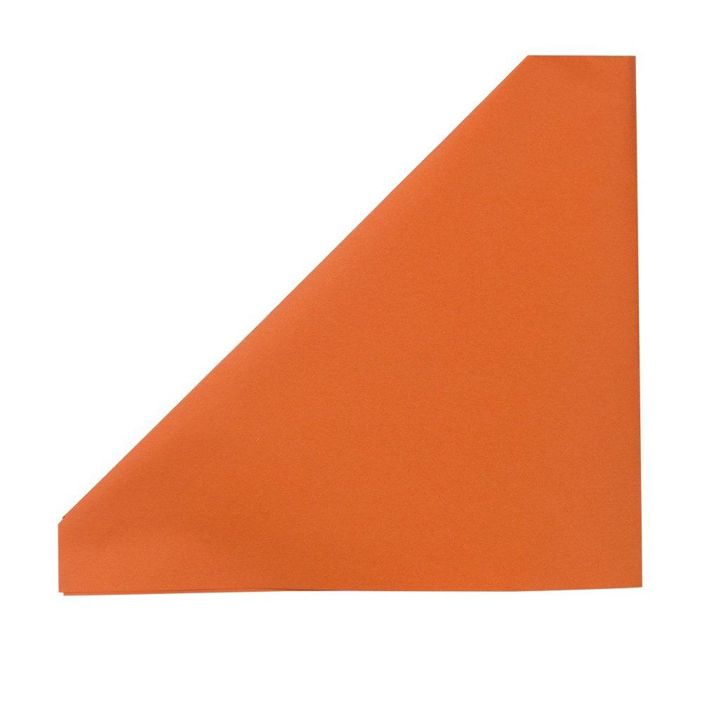 B2 Tarnkappenflieger Papierflieger - Schritt 5