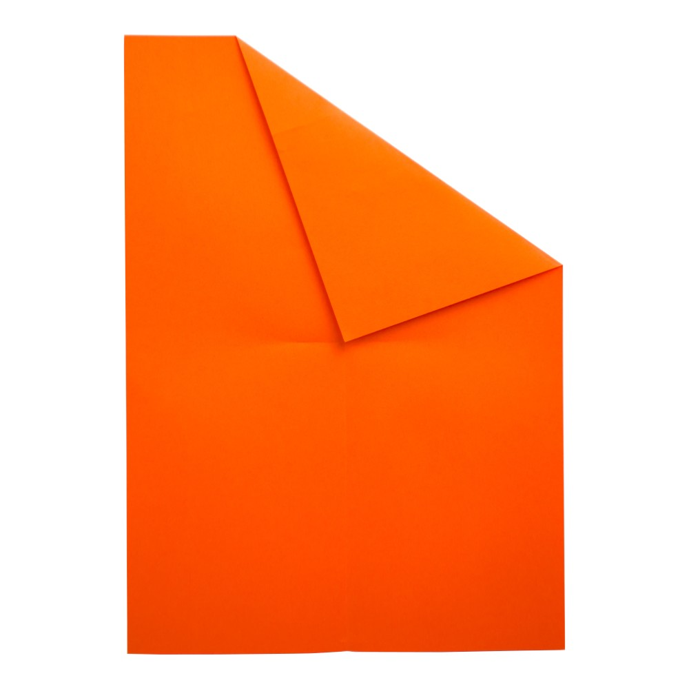 Papierflugzeug Wizard - Schritt 5