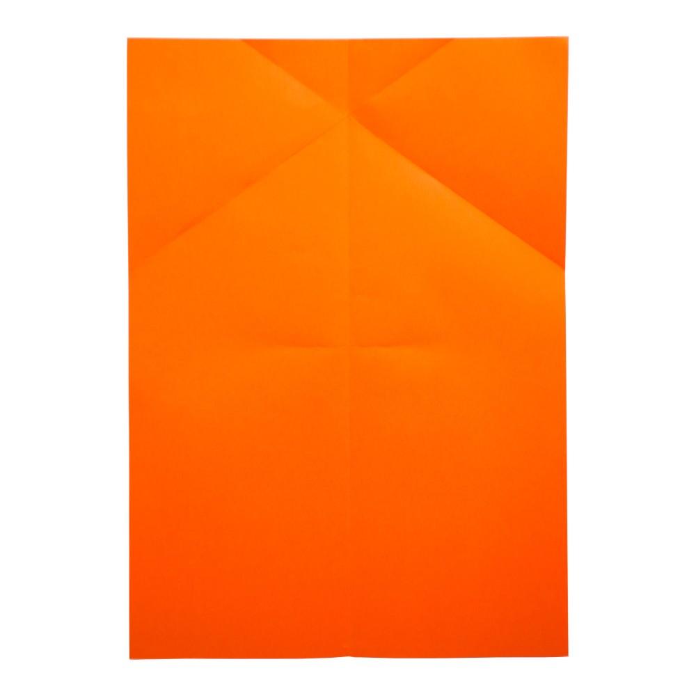 Papierflugzeug Wizard - Schritt 7