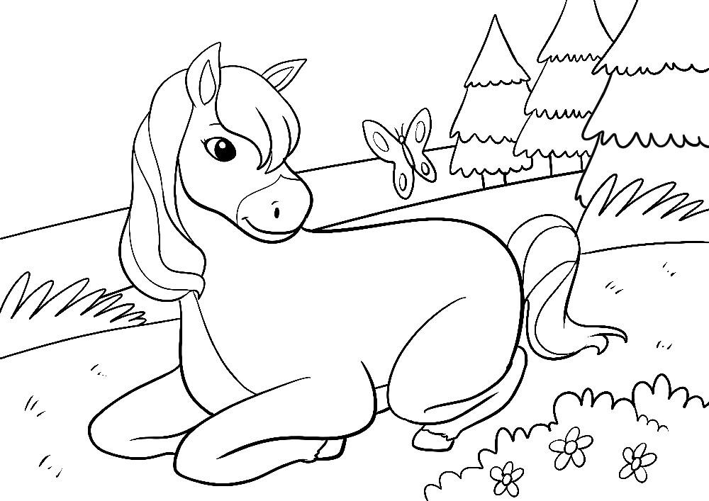 Ausmalbilder Tiere - Ein Pony mit starker Mähne liegt im Gras