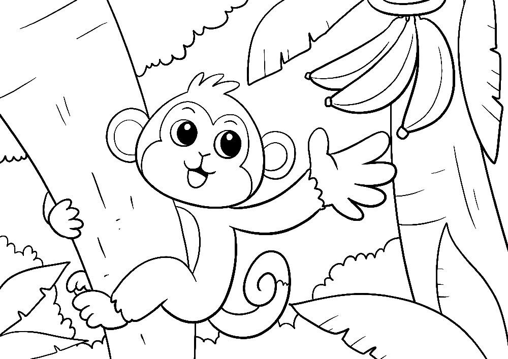 Affe greift nach einer Banane