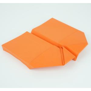 Papierflieger basteln