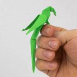 Origami Papagei falten Anleitung - Origami Vogel falten - Origami Tiere falten
