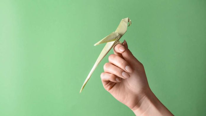 Titelbild - Wie kannst du einen Origami Papagei falten - Anleitung